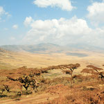 near Ngorongoro crater