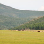 Endless horizons, pristine nature, fresh air and clear starry skies make up the Mongolian countryside. Mongolia is the least densely populated country in the world