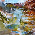Rivière d automne