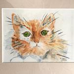 Katze, 30 x 24 cm, 80,00 €