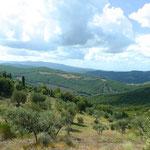 Blick über das Val d'Orcia