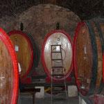 Weinkeller Cantina Crociani