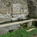 Fontana dell'Olmo