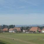 Gossliwil