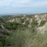 Landschaft der Crete Senesi mit starker Erosion