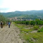 Aufstieg von Greve nach San Cresci