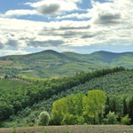 Landschaft um Radda