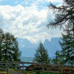 Lerchenwiesen auf dem Tschöggelberg mit Blick auf den Schlern