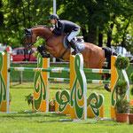 Calimero EW v. Candillo a.d. La Rose v. Landadel x Goldferdl, Bayerische Meisterschaft 2013