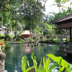 Gunung Kawi Sebatu Tempel Bali