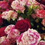 元気いっぱいに咲いているケニアのバラ