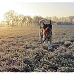 Es wird kälter - aber tolle Sonnenaufgänge am Morgen!