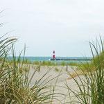Strandhafer mit Aussicht auf die Ostmole. Foto: © Huber / PIXELIO