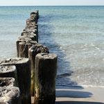 Foto: Buhnen an der Ostsee. Foto: © ostsee-club24 / PIXELIO