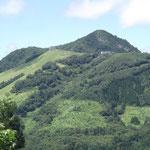 緑の飯士山