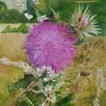Distel - olieverf op canvas - 60x45cm - te koop