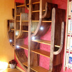 mobilier d'art  - la bibliothèque cactus