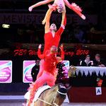 Mevisto Amadeus Horse Indoor 2014