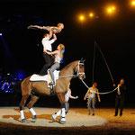 Cavallo Classico 2014