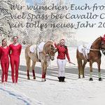 30 Jahre VVI Haflingerweihnachtsshow