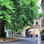 In der Abbey Green mit einem riesen Ahorn Baum. Durchgang zur Abbeygate St.