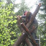 Tor zum Urwald