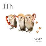 アルファベットシリーズ h「hear」