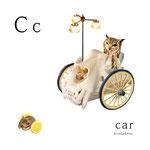 アルファベットシリーズ c「car」