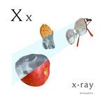 アルファベットシリーズ x「x-ray」