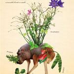 「植物と動物を組み合わせた、不思議な生き物図鑑」009:ツムツムショクブツ 自分の体を植物でいっぱいにしたくて、「植物と動物を組み合わせた、不思議な生き物図鑑」 いろいろな所から手当たり次第に摘んでは体に植え付ける。