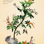 「植物と動物を組み合わせた、不思議な生き物図鑑」003:セイメイセイゾウノキ 根に吸収される生命エネルギーを使い、生き物を次々と製造する。