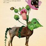 「植物と動物を組み合わせた、不思議な生き物図鑑」 001:カイカゴモウジュウ 芽が出てきた頃は穏やかだが、成長し花が咲くと凶暴化し、人を食べる。