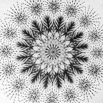 「花の一生」原画。中心から種、双葉、葉の茂り、花、種の飛び散り。