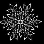 雪の結晶 20161001
