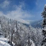St Martin d'uriage sous la neige