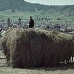 Bis der Motor das Pferd aus der Landwirtschaft verdrängte, waren Einsiedler als zuverlässige und unentbehrliche Helfer im Einsatz. Im Winter beim Holzrücken, im Sommer beim Mähen und Heuen. Foto: KAE F4.0/59.5