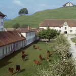 Seit rund 1000 Jahren werden in den Marstallgebäuden ohne Unterbruch Pferde gehalten. Das kulturhistorische Erbe wird von der Marstall Kloster Einsiedeln GmbH weiter gepflegt. Foto: KAE 1.0502.0004