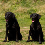 Fin und Grace (Eltern von Ivy)