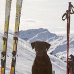 Skitour mit Sebi und Ivy