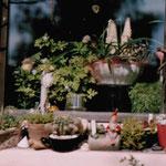 ©martina spannruft,fruehling auf der spek
