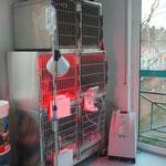 Unsere Kleintierstation mit Wärmelampe und Sauerstoffgerät
