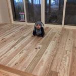 杉の無垢フローリング。既製品の表面のようにひんやりしません。スリッパいらずの床。