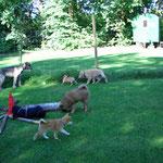 Hina erste Photos September 2009