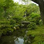 美しい曲線を描く石橋を渡ってお茶室へ