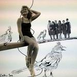 Blatt 24 Hühner auf der Stange  25 x 25 cm - 2013 (c) Collage von Susanne Haun