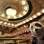 台湾・台北( Taipei )の国立劇場に現れたいとしのパンダちゃん♪