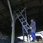 Anbringen eines Steinkauzkasten in einen Wagenschauer