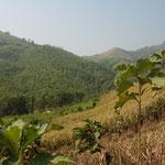 In den Bergen von Laos