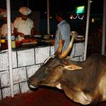 Kühe im Restaurant