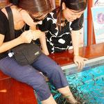 Eine Fuss-Fisch-Massage! :)